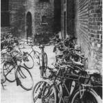 Rechten in Utrecht – Meester in de maatschappij