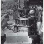 BrederoGuinea