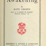 Geraas, gegons, gezoem en gefluister – Het oceanische bij Freud, Chopin en Ozon