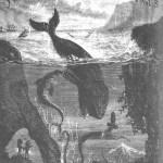 Van kraaiennest tot kraaienmars – Twintig duizend mijlen onder zee met Jules Verne