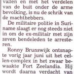 BrunswijkLijfwacht