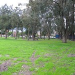 The field between UWC and Hector Peterson Residence