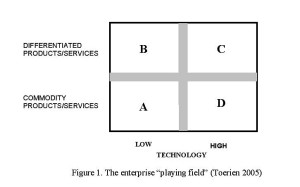 "Figure 1. The enterprise ""playing field"" (Toerien 2005)"