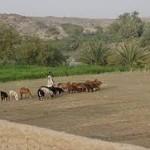 landreform3 en.wikipedia.org