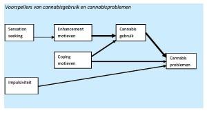 Voorspellers van cannabisgebruik en cannabisproblemen