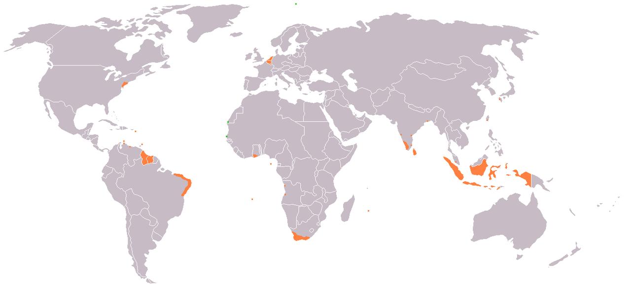 nederlandse wikipedia