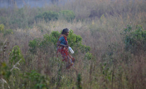 An Indian woman walks in a field after relieving herself in the open, on World Toilet Day on the outskirts of Jammu, India, Wednesday, Nov. 19, 2014. U.N. figures show of India's 1.2 billion people, 665 million, mostly those in the countryside, don't have access to a private toilet or latrine, something taken for granted in developed nations. Some villages have public bathrooms, but many women avoid using them because they are usually in a state of disrepair and because men often hang around and harass the women. (AP Photo/Channi Anand)