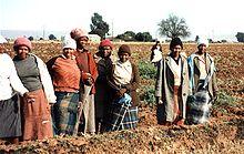 SouthAfricaFieldwork