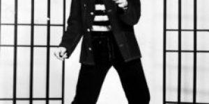 De Walrus of Love en de King of Rock: opmerkelijke bijnamen in de popmuziek