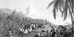 Trace Your Caribbean Ancestors Like Liz Bonnin